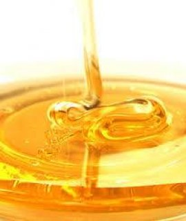 تصدير العسل النحل المصرى