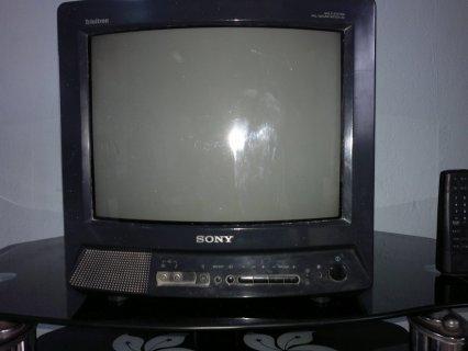 تلفزيون مع ميز